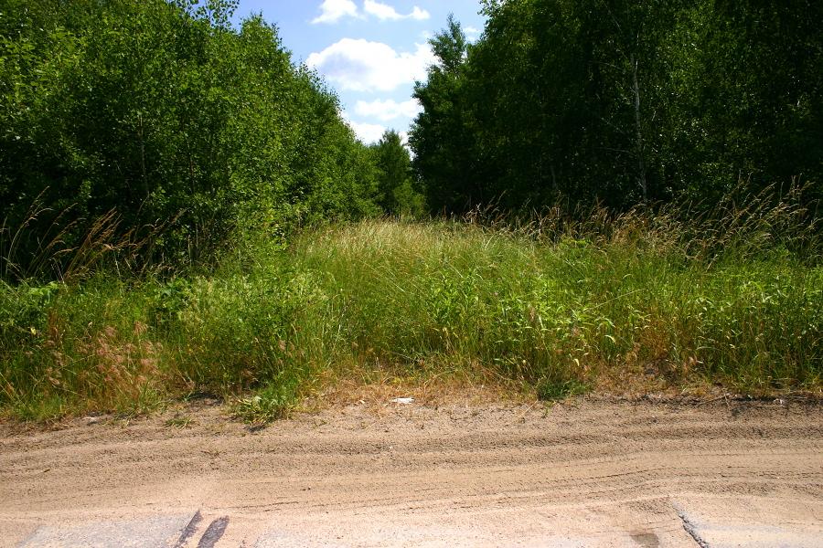 Kruki (dojazd do żwirowni) - kierunek Grabowo