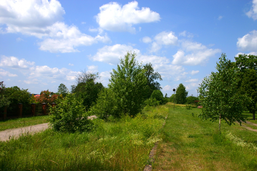 Nowa Wieś Kościelna (k. Wielbark)