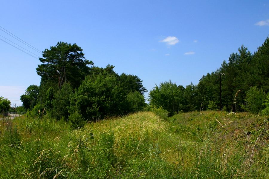 Przejazd #3 we wsi Dłutówka